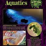 Gallery-Poster-Amazing-Aquatics-900