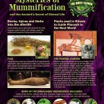 Gallery-Poster-Mummification-900