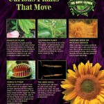 Gallery-Poster-Plants-That-Move-900