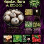 Gallery-Poster-Plants-That-Smoke-and-Burn-900